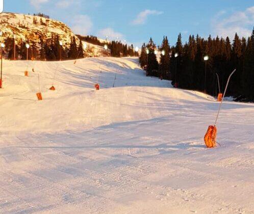 Åre-skijanje-6-498x1024[1]